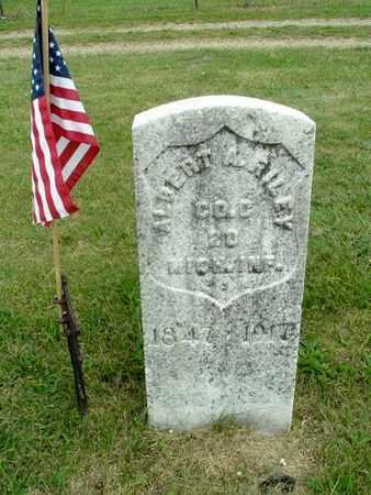 RILEY, ALBERT A. - Calhoun County, Michigan | ALBERT A. RILEY - Michigan Gravestone Photos