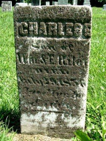 RILEY, CHARLES E. - Calhoun County, Michigan | CHARLES E. RILEY - Michigan Gravestone Photos