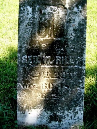 RILEY, GEORGE W. - Calhoun County, Michigan | GEORGE W. RILEY - Michigan Gravestone Photos