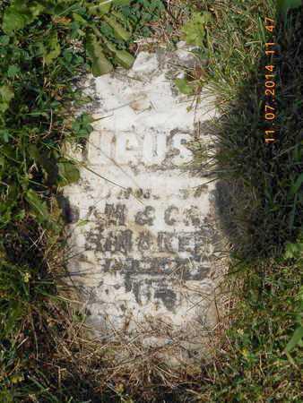 RINAKER, AUGUSTA - Calhoun County, Michigan | AUGUSTA RINAKER - Michigan Gravestone Photos
