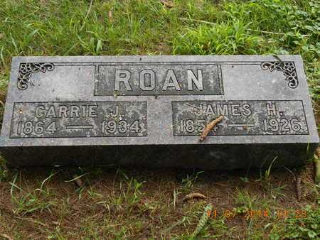 ROAN, JAMES H. - Calhoun County, Michigan | JAMES H. ROAN - Michigan Gravestone Photos