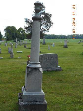 ROBBINS, HIRAM B. - Calhoun County, Michigan   HIRAM B. ROBBINS - Michigan Gravestone Photos