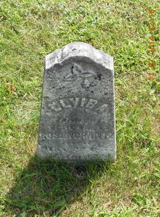 ROSENCRANTZ, ELVIRA - Calhoun County, Michigan   ELVIRA ROSENCRANTZ - Michigan Gravestone Photos