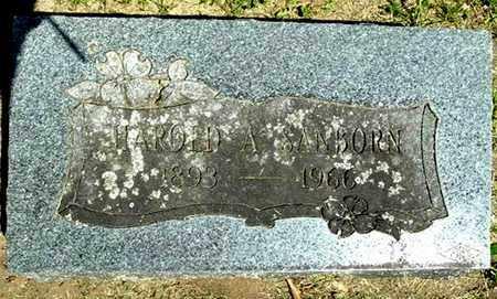 SANBORN, HAROLD A - Calhoun County, Michigan | HAROLD A SANBORN - Michigan Gravestone Photos