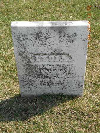 SECHLER, LYDIA - Calhoun County, Michigan   LYDIA SECHLER - Michigan Gravestone Photos