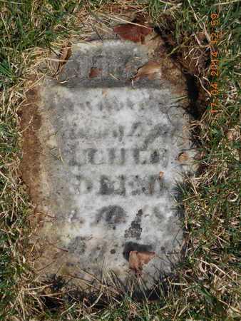 SECHLER, LYDIA - Calhoun County, Michigan | LYDIA SECHLER - Michigan Gravestone Photos