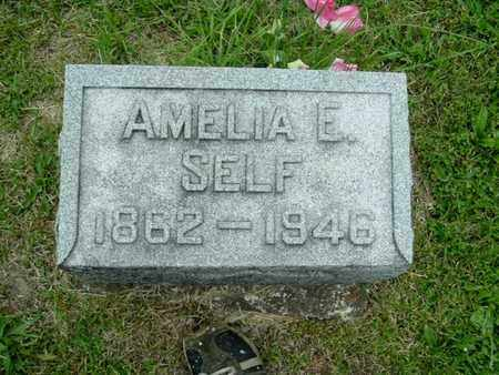 SELF, AMELIA - Calhoun County, Michigan   AMELIA SELF - Michigan Gravestone Photos