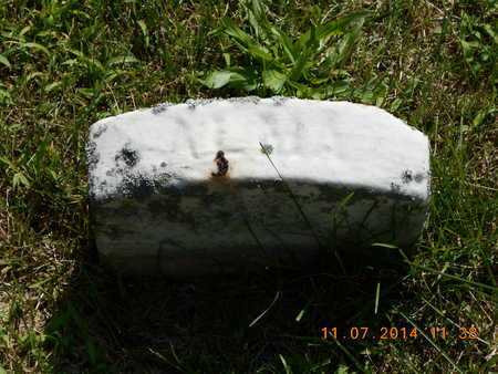 SHAW, ALMA L. - Calhoun County, Michigan | ALMA L. SHAW - Michigan Gravestone Photos