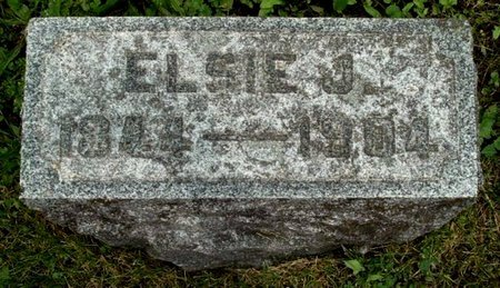 SHAW, ELSIE J - Calhoun County, Michigan | ELSIE J SHAW - Michigan Gravestone Photos
