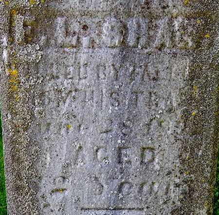 SHAW, FRANK L - Calhoun County, Michigan   FRANK L SHAW - Michigan Gravestone Photos