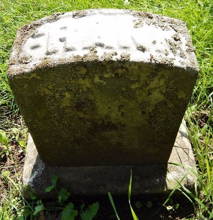 SHAW, FRANK L - Calhoun County, Michigan | FRANK L SHAW - Michigan Gravestone Photos