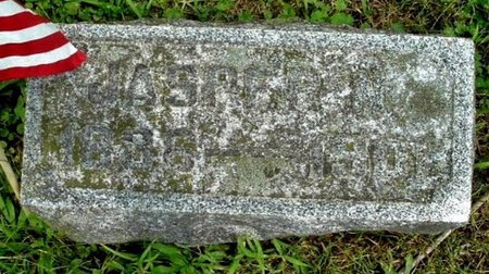 SHAW, JASPER - Calhoun County, Michigan | JASPER SHAW - Michigan Gravestone Photos