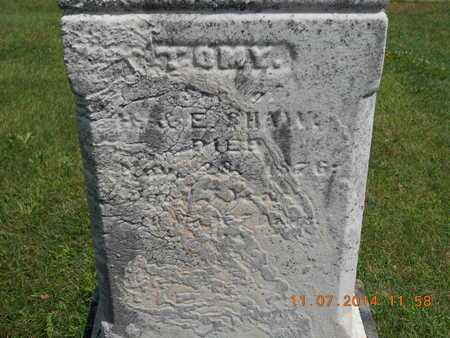 SHAW, TOMY - Calhoun County, Michigan | TOMY SHAW - Michigan Gravestone Photos
