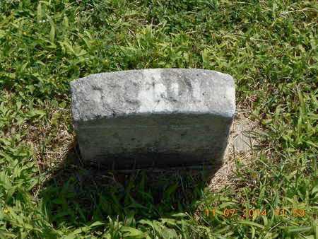 SHAW, TOMY - Calhoun County, Michigan   TOMY SHAW - Michigan Gravestone Photos