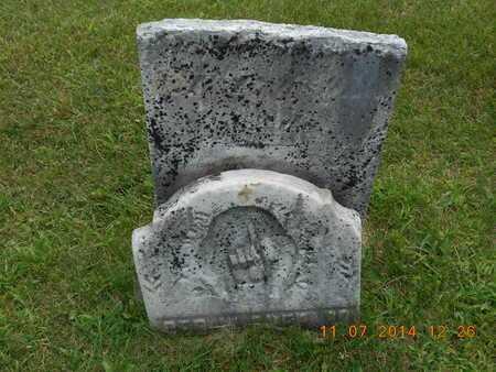 SHEPARD, GEORGE W. - Calhoun County, Michigan   GEORGE W. SHEPARD - Michigan Gravestone Photos