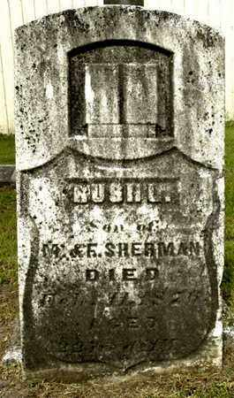 SHERMAN, RUSH L - Calhoun County, Michigan   RUSH L SHERMAN - Michigan Gravestone Photos