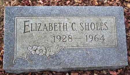 SHOLES, ELIZABETH C - Calhoun County, Michigan | ELIZABETH C SHOLES - Michigan Gravestone Photos