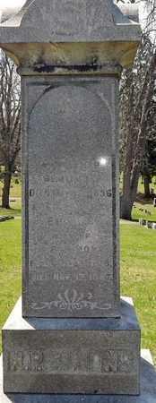 SIMONS, EMELINE - Calhoun County, Michigan | EMELINE SIMONS - Michigan Gravestone Photos