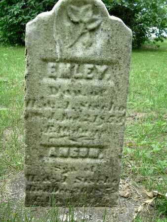 SISCHO, ANSON - Calhoun County, Michigan | ANSON SISCHO - Michigan Gravestone Photos