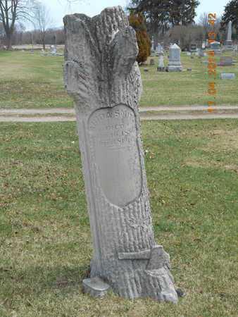SMITH, ABIDA - Calhoun County, Michigan | ABIDA SMITH - Michigan Gravestone Photos