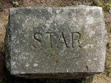 SMITH, STAR - Calhoun County, Michigan | STAR SMITH - Michigan Gravestone Photos
