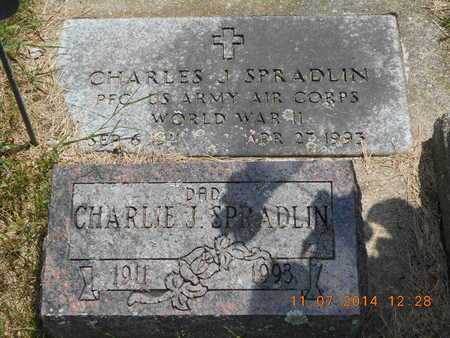 SPRADLIN, CHARLES J. - Calhoun County, Michigan | CHARLES J. SPRADLIN - Michigan Gravestone Photos