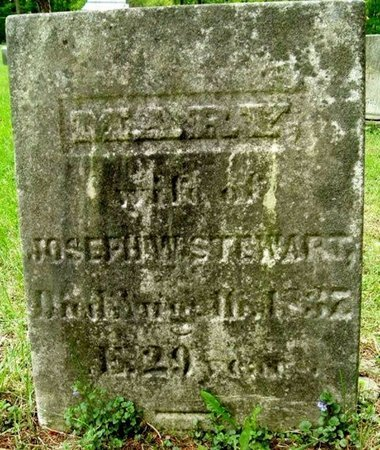 HISCOCK STEWART, MARY - Calhoun County, Michigan | MARY HISCOCK STEWART - Michigan Gravestone Photos