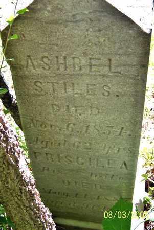 STILES, PRISCILLA - Calhoun County, Michigan | PRISCILLA STILES - Michigan Gravestone Photos