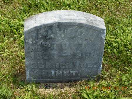STOUT, MAHLON - Calhoun County, Michigan | MAHLON STOUT - Michigan Gravestone Photos