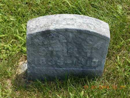 STOUT, MELISSA - Calhoun County, Michigan   MELISSA STOUT - Michigan Gravestone Photos