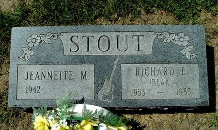 STOUT, RICHARD E. - Calhoun County, Michigan | RICHARD E. STOUT - Michigan Gravestone Photos