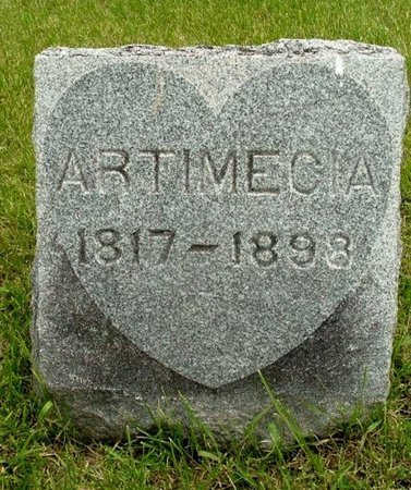 STRONG, ARTIMECIA - Calhoun County, Michigan | ARTIMECIA STRONG - Michigan Gravestone Photos