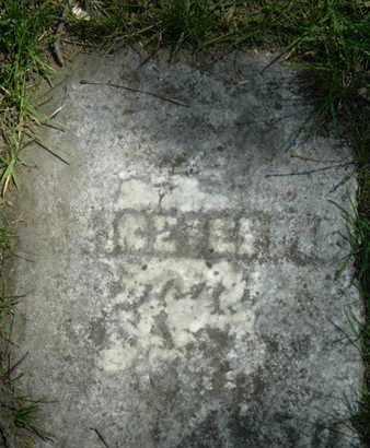 SWEET, ALICE E - Calhoun County, Michigan | ALICE E SWEET - Michigan Gravestone Photos