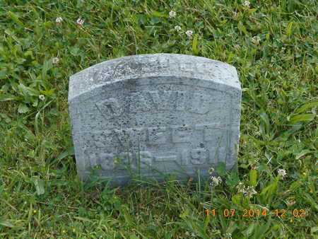 SWEET, DAVID - Calhoun County, Michigan | DAVID SWEET - Michigan Gravestone Photos
