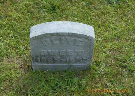 SWEET, OLIVE - Calhoun County, Michigan | OLIVE SWEET - Michigan Gravestone Photos
