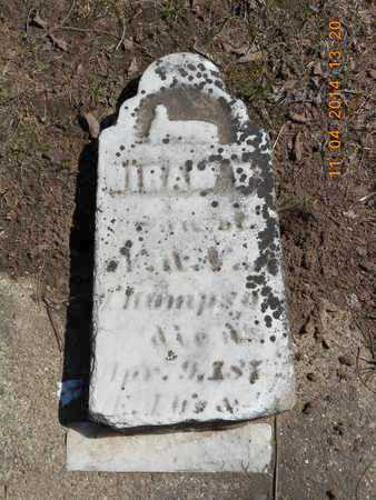 THOMPSON, HIRAM W. - Calhoun County, Michigan | HIRAM W. THOMPSON - Michigan Gravestone Photos