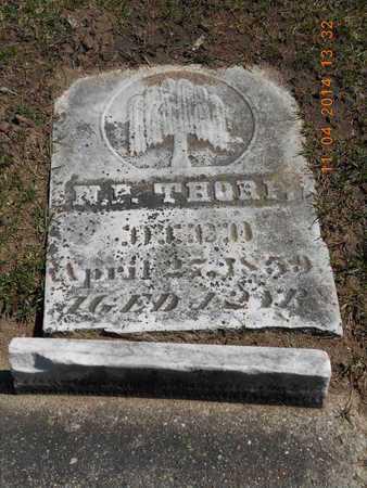 THORP, N.P. - Calhoun County, Michigan | N.P. THORP - Michigan Gravestone Photos