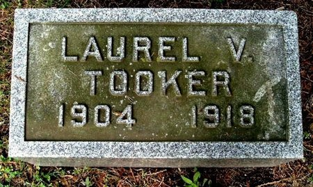 TOOKER, LAUREL V - Calhoun County, Michigan | LAUREL V TOOKER - Michigan Gravestone Photos