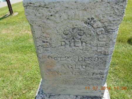 VANDYBOGURT, ELIZA - Calhoun County, Michigan   ELIZA VANDYBOGURT - Michigan Gravestone Photos