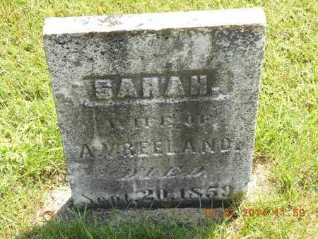 VREELAND, SARAH - Calhoun County, Michigan | SARAH VREELAND - Michigan Gravestone Photos