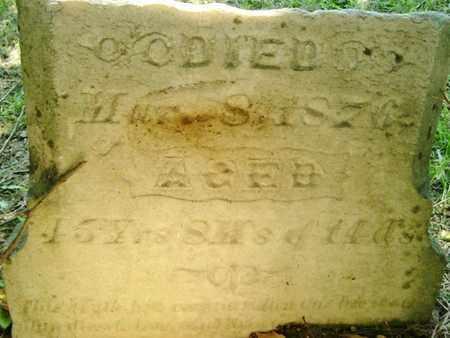 WALKER, HENRY W. - Calhoun County, Michigan | HENRY W. WALKER - Michigan Gravestone Photos