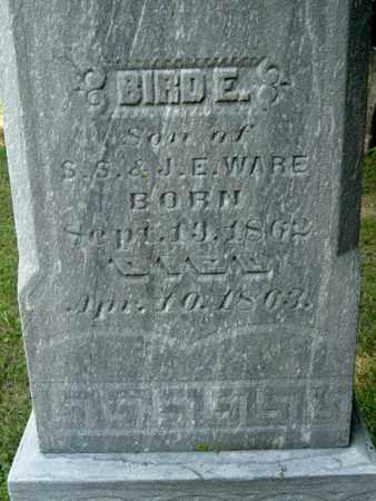 WARE, BIRD E. - Calhoun County, Michigan   BIRD E. WARE - Michigan Gravestone Photos