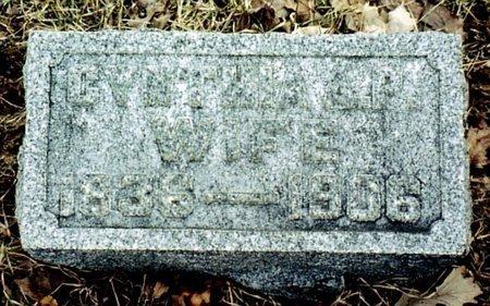 WEBSTER, CYNTHIA - Calhoun County, Michigan   CYNTHIA WEBSTER - Michigan Gravestone Photos
