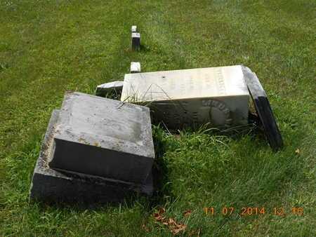 WELLER, FAMILY - Calhoun County, Michigan   FAMILY WELLER - Michigan Gravestone Photos
