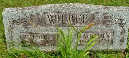 WILBER, HAROLD L - Calhoun County, Michigan | HAROLD L WILBER - Michigan Gravestone Photos