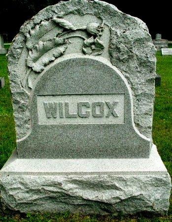 WILCOX, FAMILY MARKER - Calhoun County, Michigan   FAMILY MARKER WILCOX - Michigan Gravestone Photos