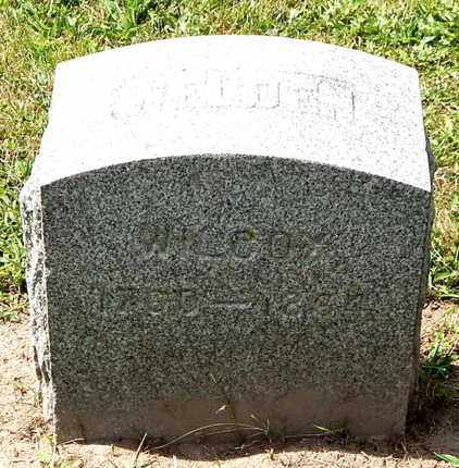 WILCOX, WELDEN - Calhoun County, Michigan   WELDEN WILCOX - Michigan Gravestone Photos
