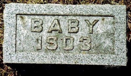 WILDT, BABY GIRL - Calhoun County, Michigan | BABY GIRL WILDT - Michigan Gravestone Photos