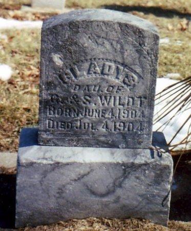 WILDT, GLADYS - Calhoun County, Michigan | GLADYS WILDT - Michigan Gravestone Photos