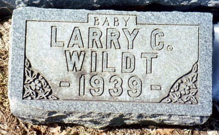 WILDT, LARRY C. - Calhoun County, Michigan | LARRY C. WILDT - Michigan Gravestone Photos